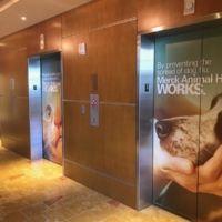 Elevator Clings – Exterior – Lobby